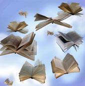 llibresvoladors